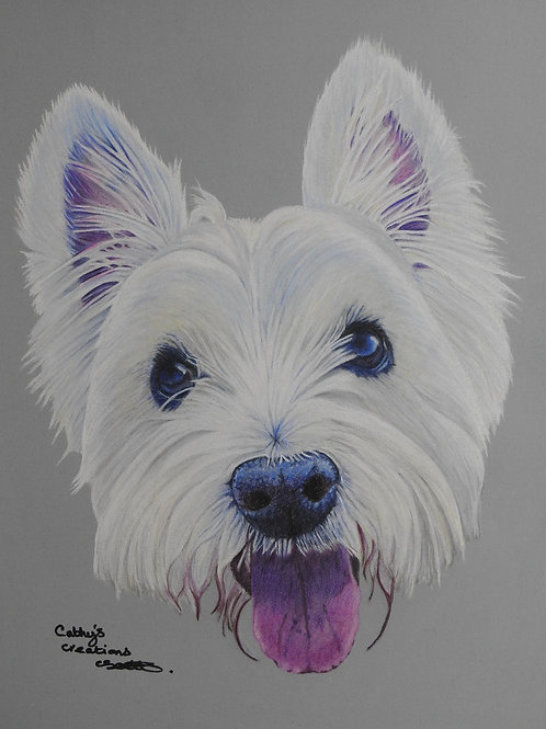 Marla the West Highland Terrier