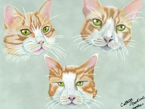 Three Ginger Cats