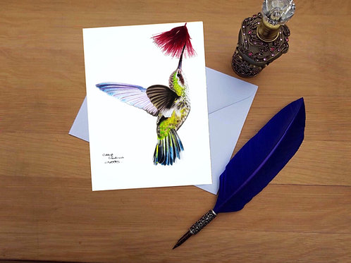 Humming bird greetings card.