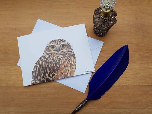 Burrowing owl greetings card.