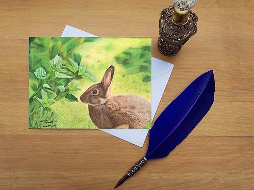 Bunny in the sun greetings card.