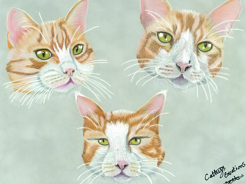 Three ginger cats greetings card.