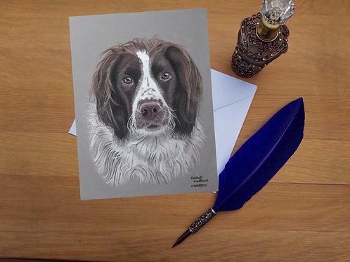 Finn the Springer Spaniel greetings card.