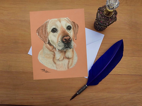 Ted the Yellow Labrador greetings card