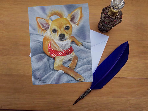 Wee Bear the Chihuahua greetings card