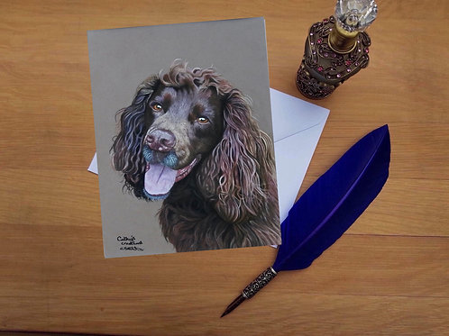 Cocker spaniel dog greetings card