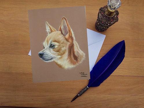 Pal the Chihuahua greetings card