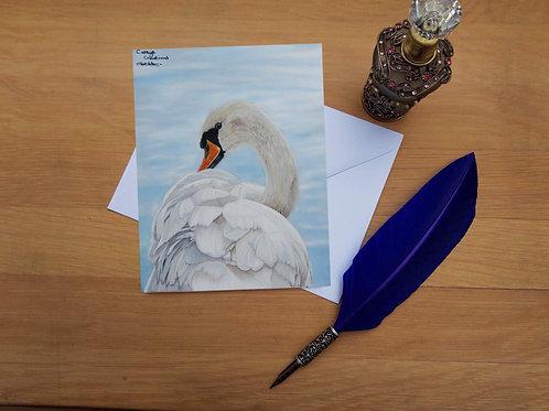 Preening swan greetings card.