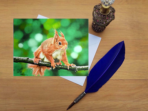 Red Squirrel greetings card.
