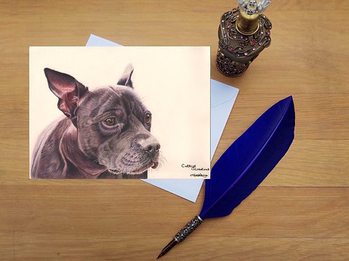 Dexter the Staffordshire Terrier greetings card.