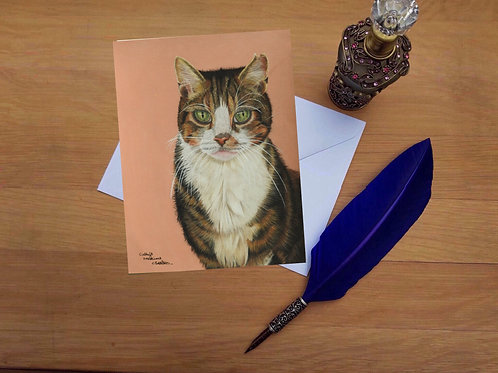 Bruno the Tabby cat greetings card