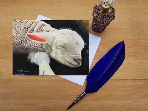Precious lamb greetings card