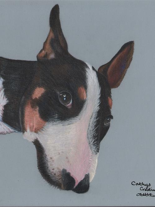 Hooch the Bull Terrier