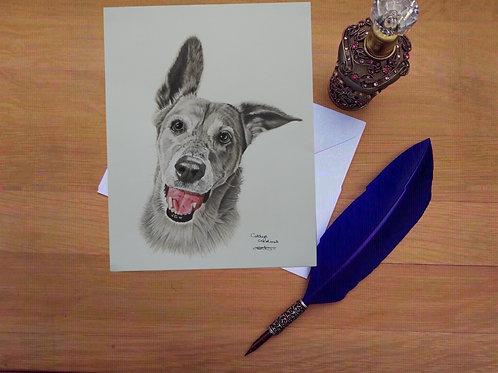 Luna the Greyhound cross greetings card.