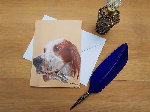 Irish Red and White Setter greetings card.