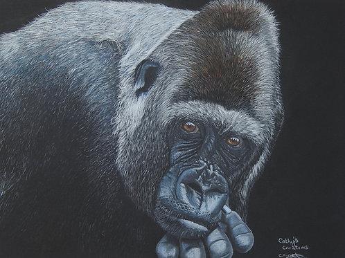 "Silver back Gorilla. "" contemplation"""