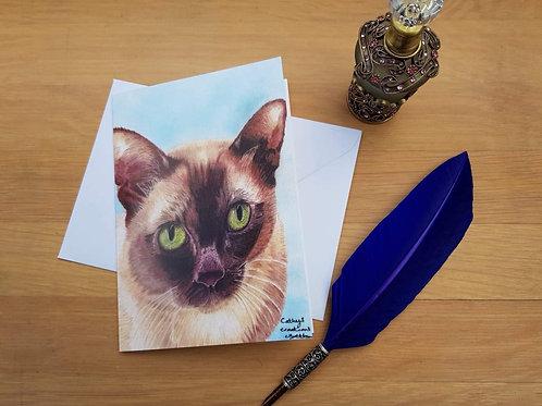 Charlie the Burmese cat greetings card.
