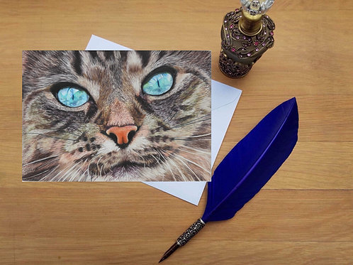 Maine Coon cat greetings card.