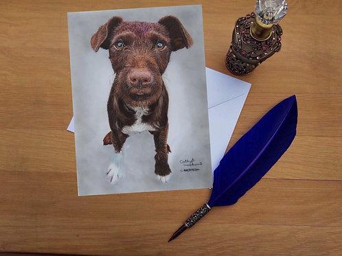 Patterdale Terrier puppy greetings card
