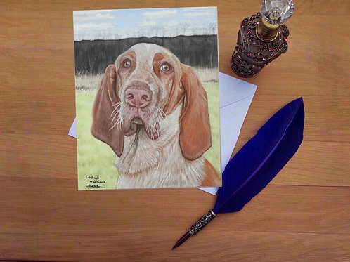 Piper the Bracco Italiano greetings card.