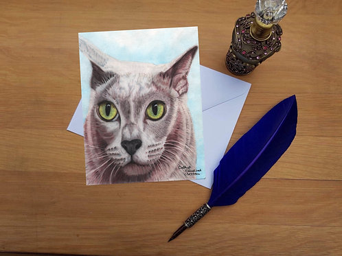 Harry the Burmese cat greetings card.