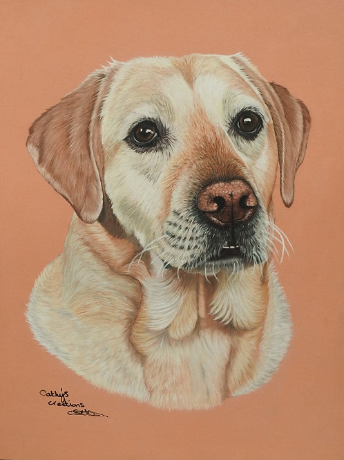 Ted the Yellow Labrador