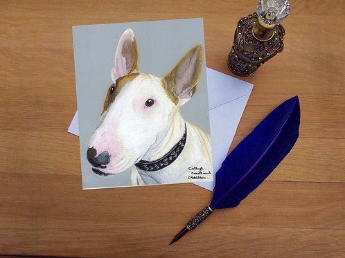 Zeke the English Bull Terrier greetings card.