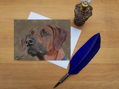 Rhodesian Ridgeback greetings card.