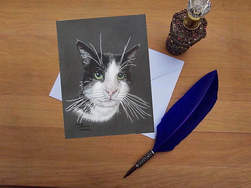 Molly the Black and white cat greetings card