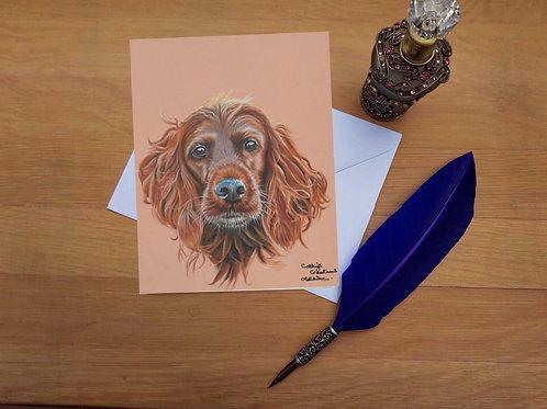 Gypsy the Irish Setter greetings card.