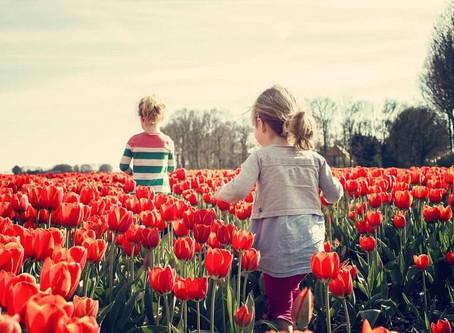 Evaluarea și INTERVENȚIA timpurie la copiii cu DEFICIENȚE mintale