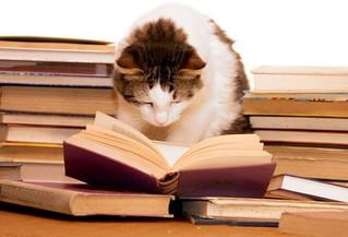 January Book Nook Specials