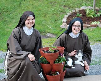 sisters cat.jpg