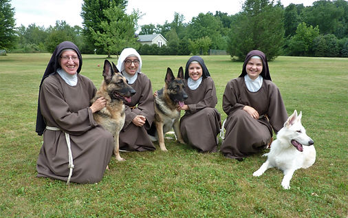 dogs St. Francis.jpg