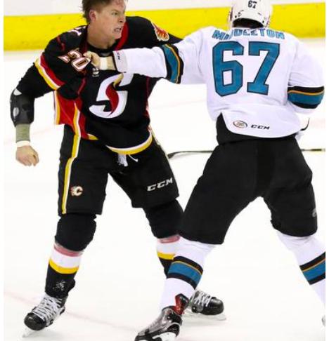Austin Carroll: Professional Hockey