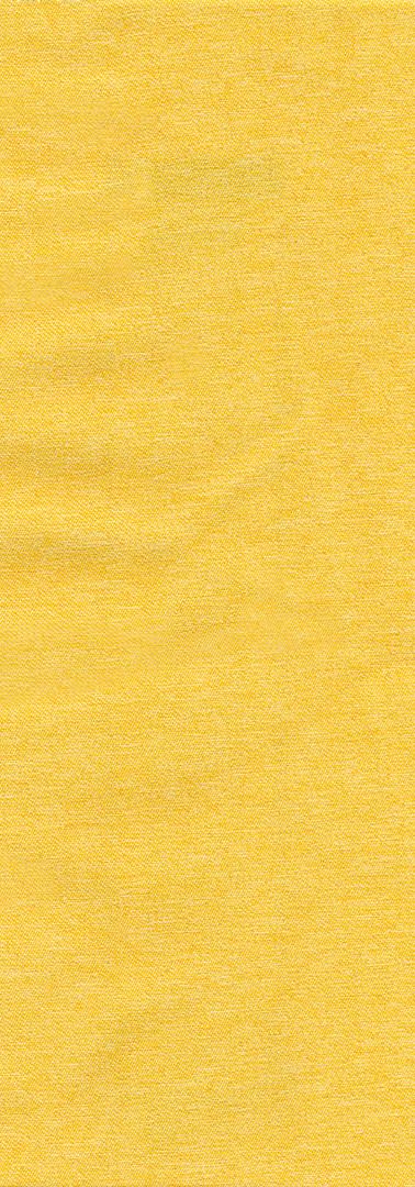 thomson yellow 2.jpg