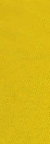 corina lime.jpg