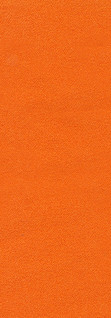 acadia orange.jpg