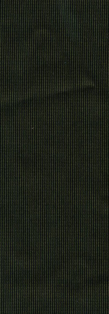 XANDER OLIVE FRENTE.jpg