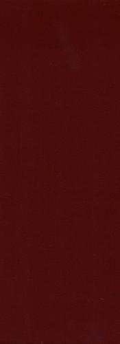 DARIO CHEDRON.jpg