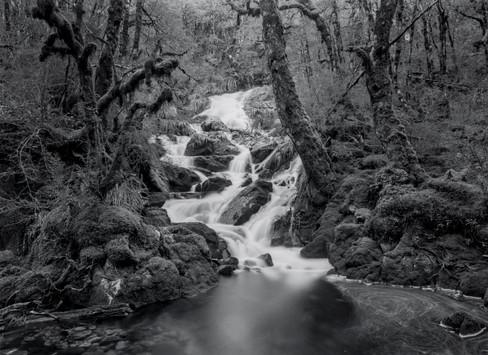 Cascade, Victoria Forest Park. 2020