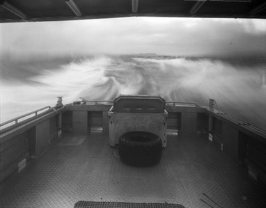 Pitt Island Ferry, 2019