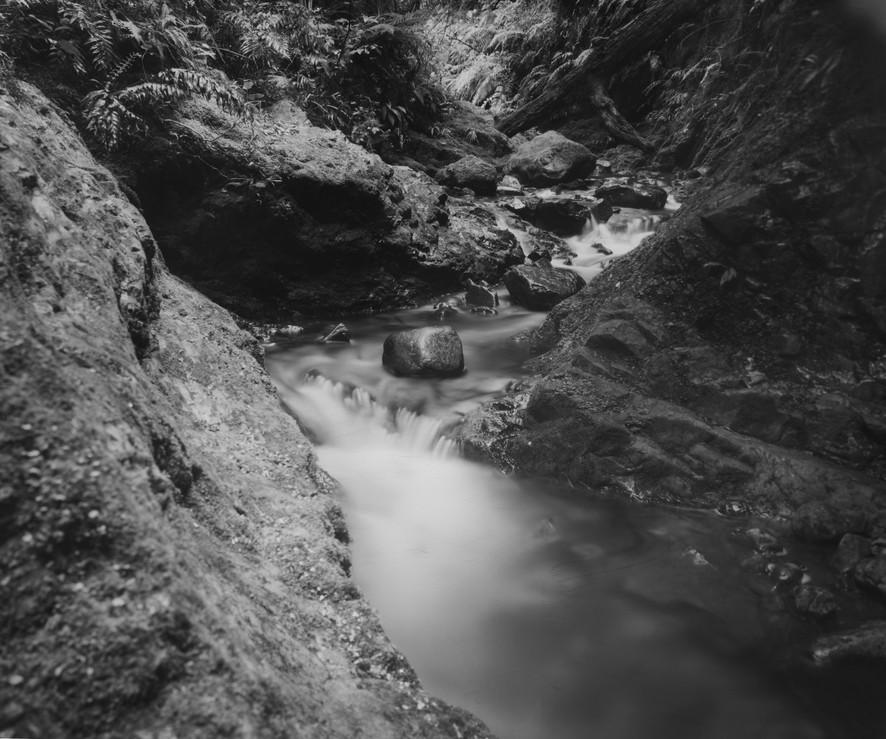 Tui Upstream, 2019
