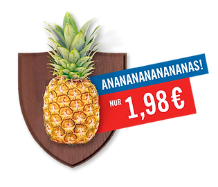 Lidl_6.png