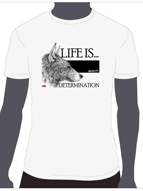 Life is... Determination
