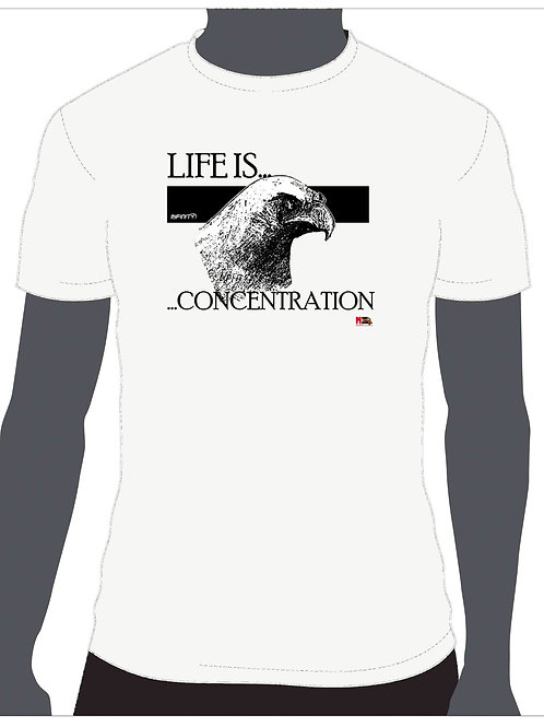 LIFE IS...CONCENTRATION