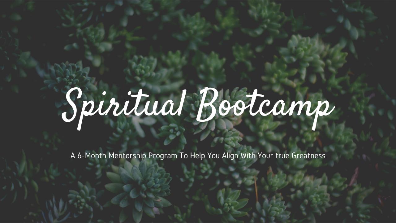 Spiritual Bootcamp and Mentorship