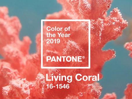Como utilizar a cor do ano de 2019, Living Coral