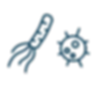 application logos.png