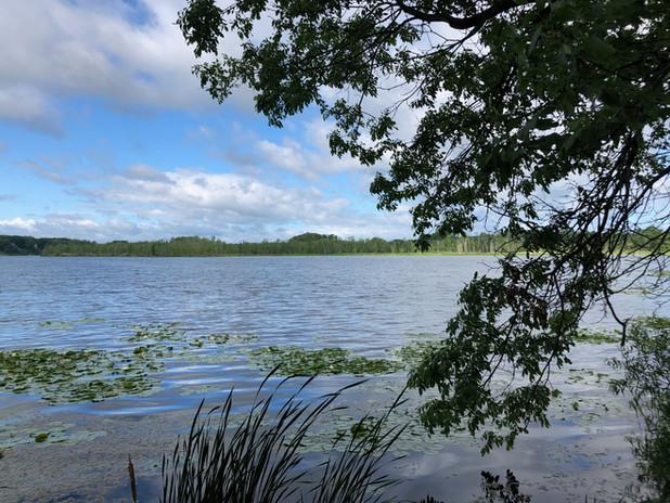 SLS_Lake_lonely_View.jpg